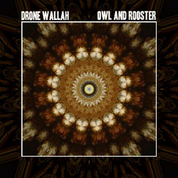 Drone Wallah - Owl and Rooster