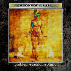 Drone Wallah - Problem Reaction Solution